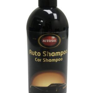 2001 Auto Shampoo (500mls)