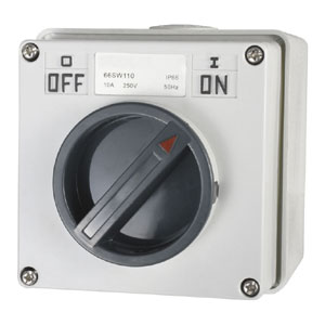 10A 1 POLE 250V SURFACE SWITCH MODULE IP66